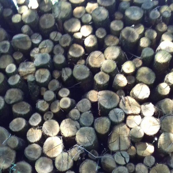 site internet pour revendeur de combustible bois dans la Vendée