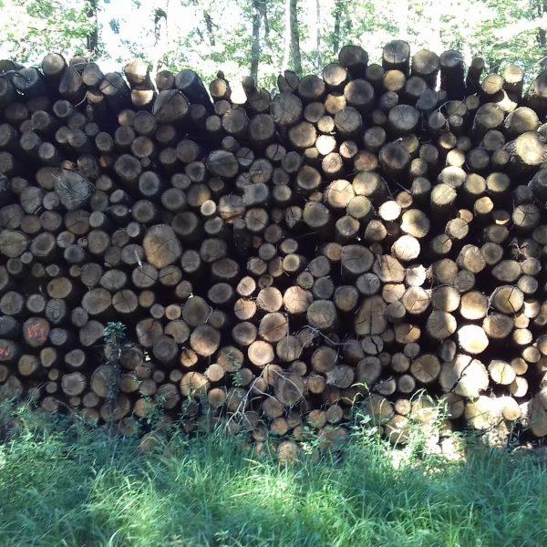 site internet pour revendeur de combustible bois dans le Val-D'Oise