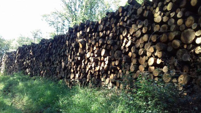 site internet pour revendeur de combustible bois dans l'Aveyron