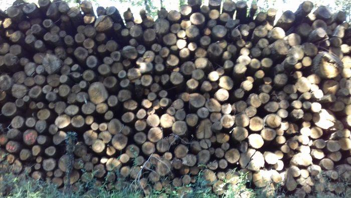 site internet pour revendeur de combustible bois dans l'Ariège