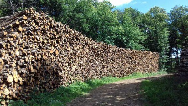 site internet pour revendeur de combustible bois dans les Alpes-de-Haute-Provence