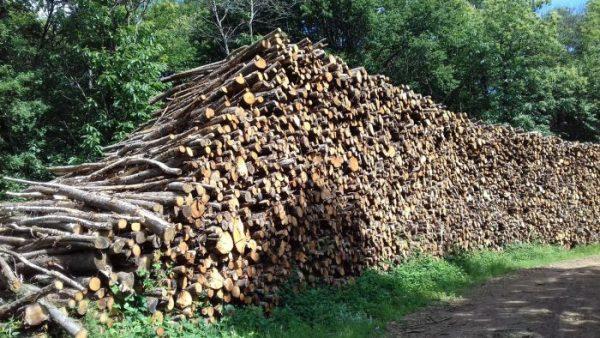 site internet pour revendeur de combustible bois dans les Hautes-Alpes