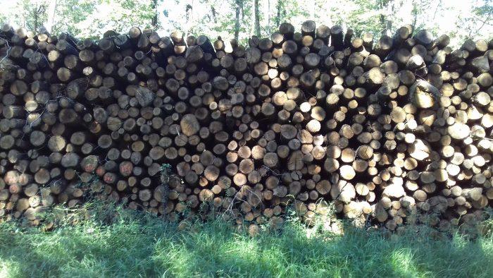 site internet pour revendeur de combustible bois dans le Calvados