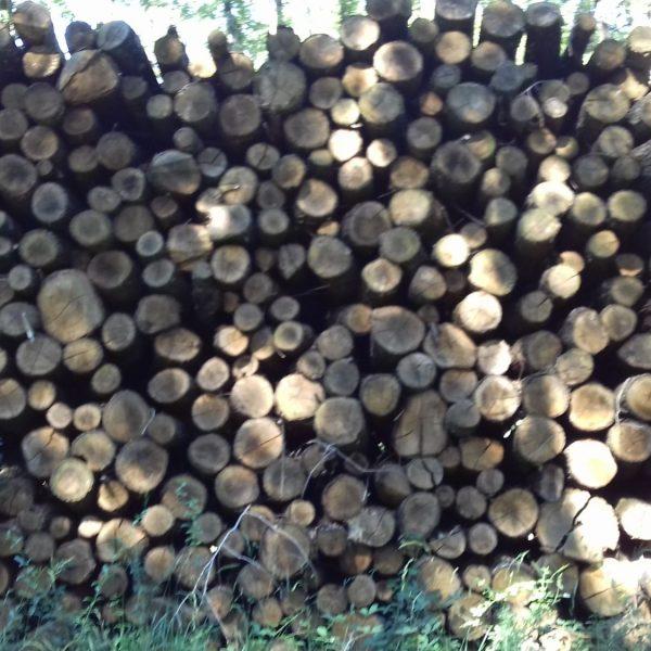 site internet pour revendeur de combustible bois dans les Bouches-du-Rhône