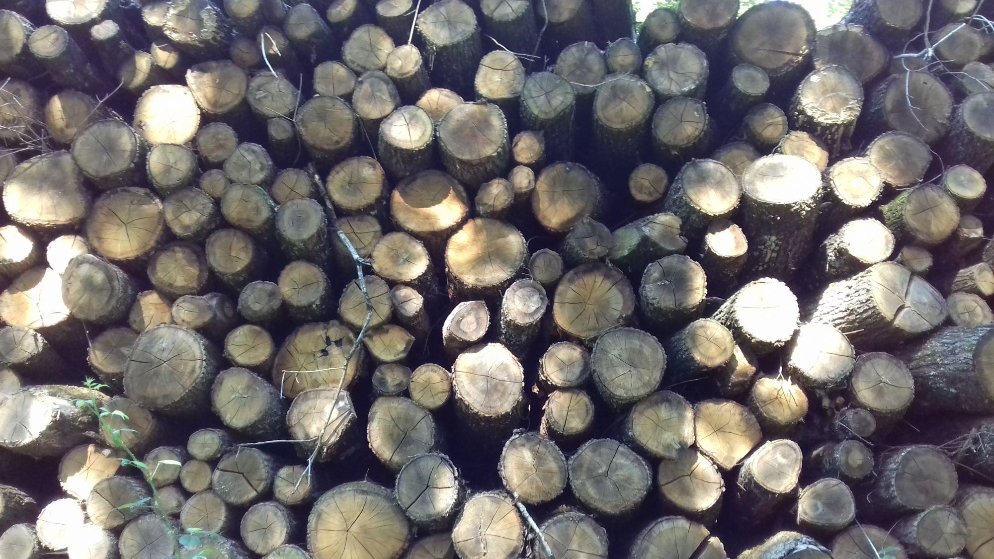 bois de chauffage 71bois de chauffage Saône-et-Loire