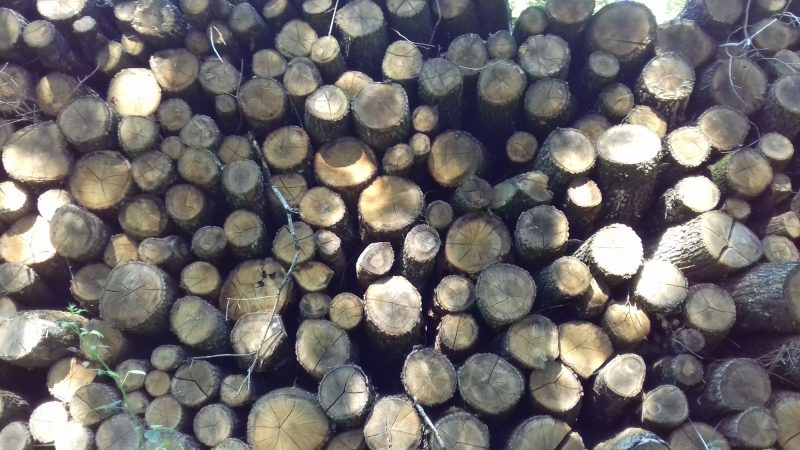 site internet pour revendeur de combustible bois dans la Creuse