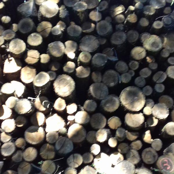 site internet pour revendeur de combustible bois dans la Haute-Garonne