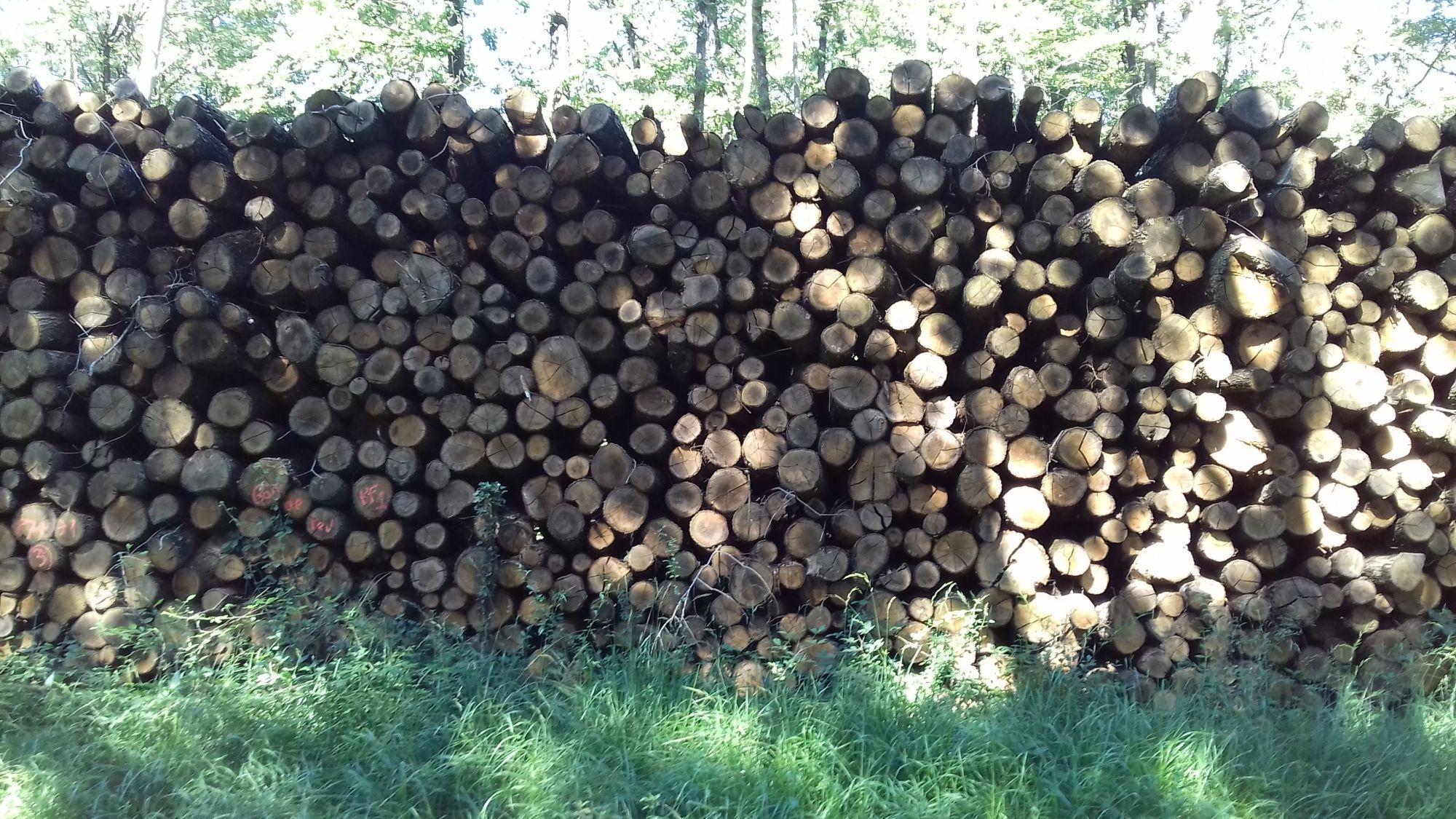 bois de chauffage Doubs
