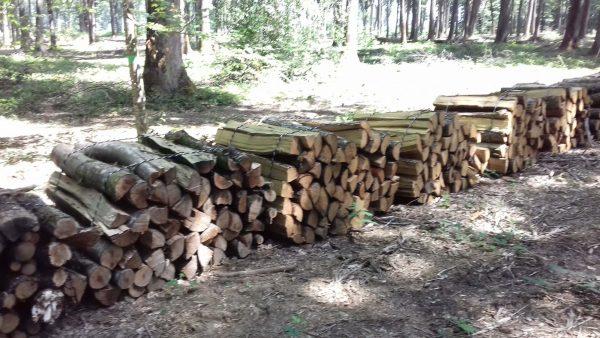 Site internet pour revendeur de combustible bois dans la Lozère