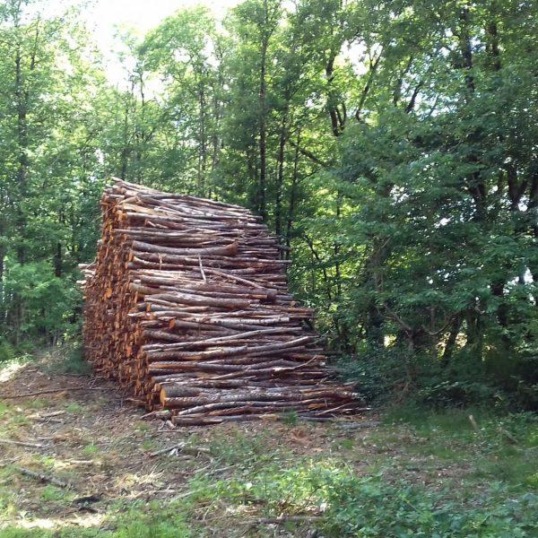 Site internet pour revendeur de combustible bois dans le Haut-Rhin