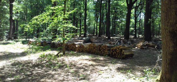 Site internet pour revendeur de combustible bois dans l'Indre