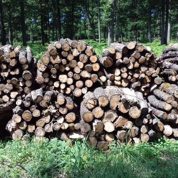 Site internet pour revendeur de combustible bois dans le Pas-de-Calais