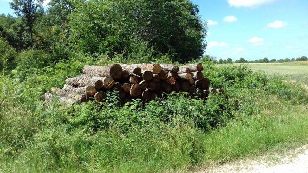 Site internet pour revendeur de combustible bois dans les Deux-Sèvres