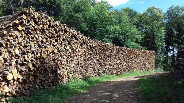 Site internet pour revendeur de combustible bois dans l'Indre-et-Loire