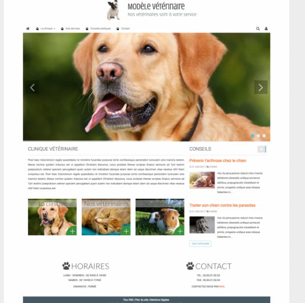 site internet pour vétérinaire